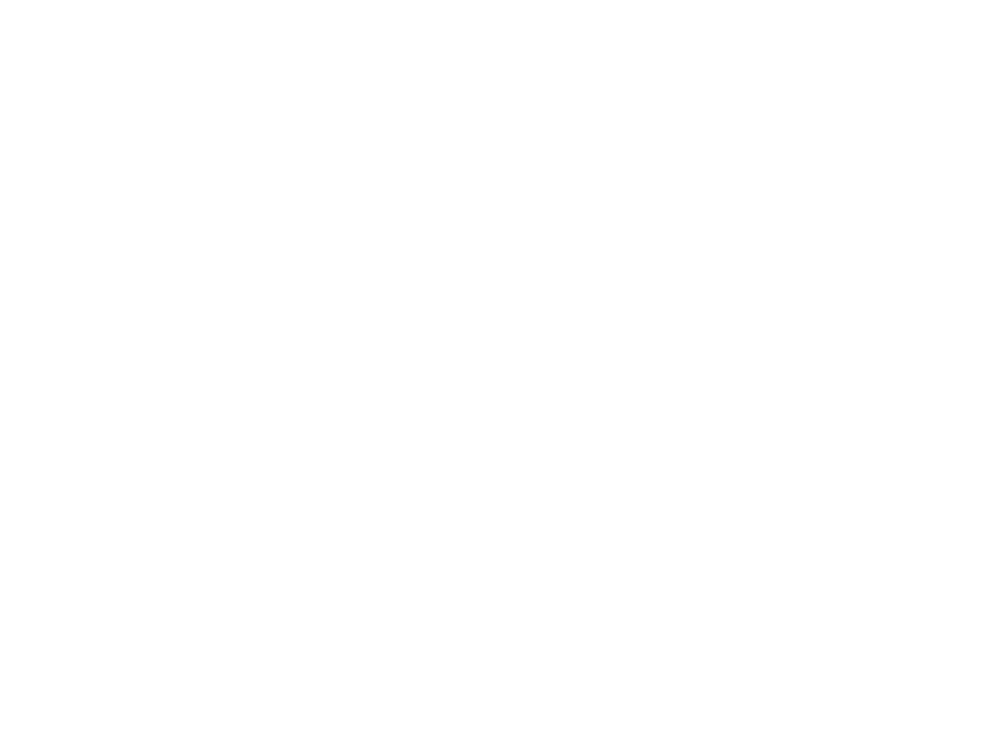 Logo The Store Designers