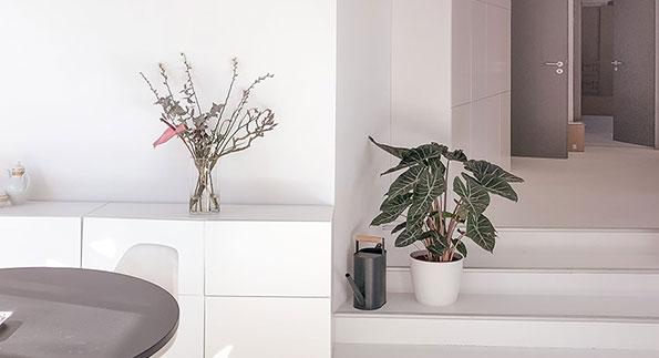 AV Concept Store Detail Produkte